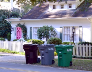 trash recycling and yard debris carts