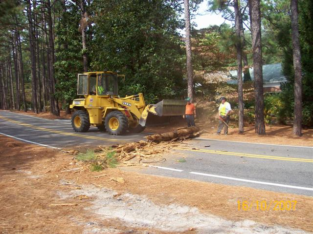 Bulldozer moving a fallen tree in the middle of the road